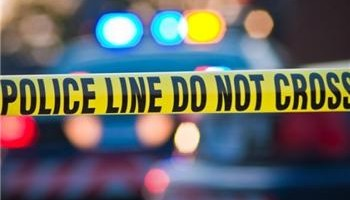 Hofstra student killed by Police